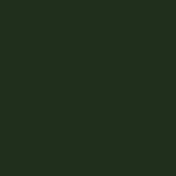 画像1: 半光沢 オリーブドラブ (1)