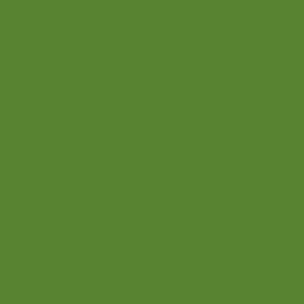 画像1: 半光沢 RLM82 ライトグリーン